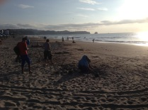 Strand von Atacames